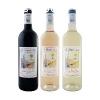 vinification 2021